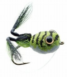 Messinger's Frog Bass Fly