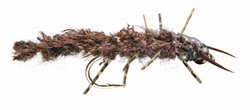 Rag Hellgrammite Tungsten Bead Head Fly