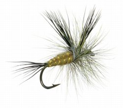 Green Drake Dry Fly (Lawson's)