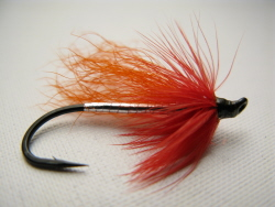 Fall Favorite Steelhead Fly